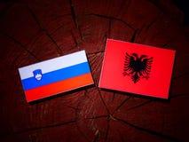 Slovensk flagga med den albanska flaggan på en trädstubbe Royaltyfri Fotografi