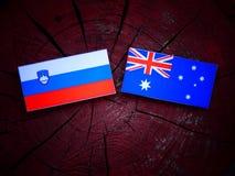 Slovensk flagga med den australiska flaggan på en trädstubbe Royaltyfri Bild