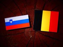 Slovensk flagga med den belgiska flaggan på en isolerad trädstubbe Royaltyfri Fotografi