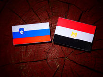 Slovensk flagga med den egyptiska flaggan på en trädstubbe Royaltyfri Fotografi