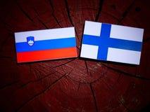 Slovensk flagga med den finlandssvenska flaggan på en isolerad trädstubbe Arkivbilder