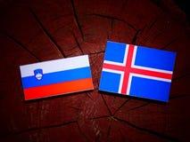 Slovensk flagga med den isländska flaggan på en isolerad trädstubbe Arkivbilder