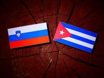 Slovensk flagga med den kubanska flaggan på en isolerad trädstubbe Fotografering för Bildbyråer