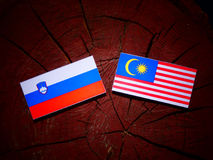 Slovensk flagga med den malaysiska flaggan på en isolerad trädstubbe Arkivfoto