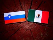 Slovensk flagga med den mexicanska flaggan på en isolerad trädstubbe Royaltyfri Bild
