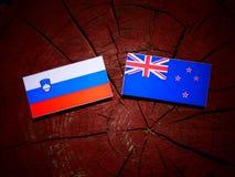 Slovensk flagga med den nyazeeländska flaggan på en isolerad trädstubbe Royaltyfri Foto