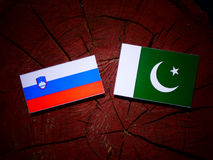 Slovensk flagga med den Pakistan flaggan på en isolerad trädstubbe Arkivbilder