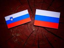 Slovensk flagga med den ryska flaggan på en trädstubbe Royaltyfria Foton