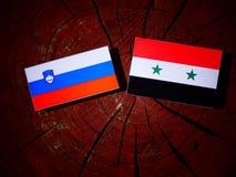 Slovensk flagga med den syrianska flaggan på en trädstubbe Royaltyfria Bilder