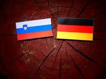 Slovensk flagga med den tyska flaggan på en trädstubbe Fotografering för Bildbyråer