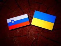 Slovensk flagga med den ukrainska flaggan på en isolerad trädstubbe Arkivbilder