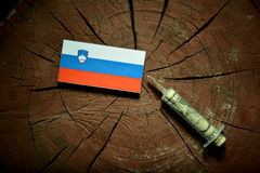 Slovensk flagga på en stubbe med injektionssprutan som injicerar pengar Arkivbilder