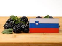 Slovensk flagga på en träpanel med björnbär som isoleras på a Arkivbild