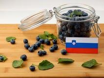 Slovensk flagga på en träplanka med blåbär på wh Arkivfoton