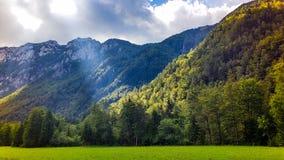 Slovensk idyllisk bergsikt Arkivfoton