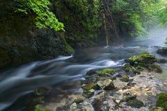 Slovensky Raj, Slovakia. Creek Velka Biela voda in the Slovensky raj National Park, northern Slovakia stock photography