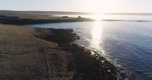 4K drone aerial over Icelandic coast at sunset in Northeast Iceland. Slow aerial flyover of a sheep farm by the ocean at sunset in northern Iceland, in early stock video footage