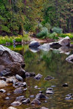Slow brook. A small brook in Sequoia Park royalty free stock images