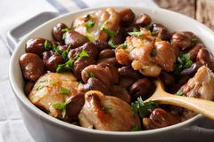 Slow cooked chicken with broad beans close up in a bowl. horizon Stock Photo
