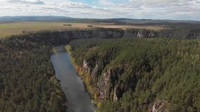 Slow direct aerial flight over a gentle mountain river, pine forest. Ay river. stock footage