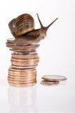 Slow dollars Stock Image