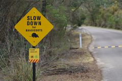Slow down for bandicoots sign in yellow color. Slow down for bandicoots and shared path of bicycle and car sign in yellow color royalty free stock photo