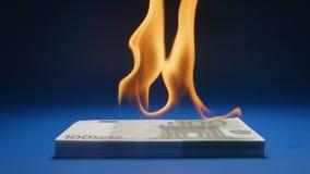 Slow motion: flaming paper money heap euro. Slow: flaming paper money heap euro stock footage