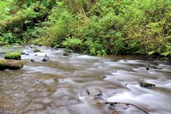 A slow flowing stream Stock Photo
