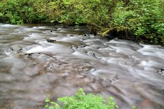 A slow flowing stream Royalty Free Stock Photography