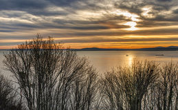 Tug Boat on Puget Sound at Sunset  Stock Images