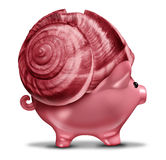 Slow Investment. And conservative investing business concept as a snail shell on a piggy bank symbol as a financial metaphor for risk tolerance in managing Royalty Free Stock Photos