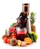 Slow juicer with organic fruits and vegetables on white Stock Images