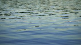 Slow Lake Surface stock video footage