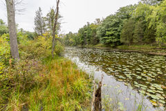 Slow Meandering River Channel in Late Summer - Ontario, Canada Stock Images