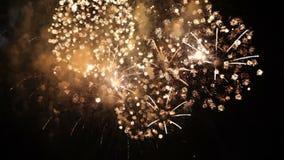 Slow mo. Beautiful Fireworks Exploding On Black stock footage