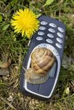 Slow mobile in the nature. Slow and nature friendly mobile phone Royalty Free Stock Photo