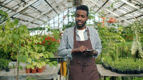 Slow motion of African American guy using tablet in greenhouse looking around. Slow motion of African American guy in apron using tablet in greenhouse looking stock footage