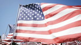 Slow motion american flags waving with a blue sky background. independence day stock footage