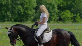 SLOW MOTION:  A beautiful girl in white hair and white clothes is riding a black brown stallion. stock video footage
