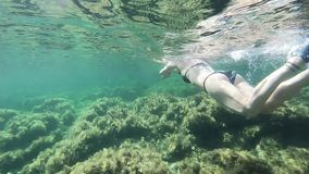 Slow motion of a beautiful young woman in a black bikini taken from underwater swimming in freestyle and dolphin in the transparen. T water with mask and stock video