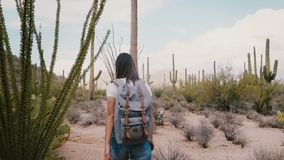 Slow motion camera follows young excited tourist woman with backpack hiking in hot dry big cactus desert in Arizona USA.