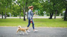 Slow motion of cheerful African American girl walking her pedigree dog in city park and using smartphone going along. Slow motion of cheerful African American stock video