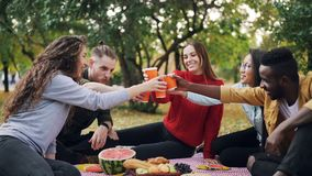Slow motion of cheerful young people multi-ethnic group clinking glasses with drinks then drinking sitting on comfy. Blanket on grass during joyful autumn stock video footage