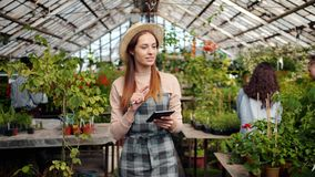 Slow motion of cheerful woman using tablet in greenhouse counting plants. Slow motion of cheerful young woman in hat and apron using tablet in greenhouse stock footage