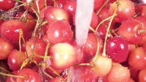 Slow motion cherry in colander under water. Slow motion in the sink red yellow cherry in a metal colander under water close-up and the camera rises up into a stock video footage