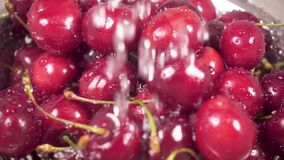 Slow motion cherry in colander under water. Slow motion drops of water fall on the red cherry in a metal colander in the sink stock video