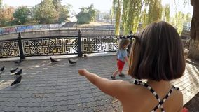 SLOW MOTION. A child in a park feeding pigeons. SLOW MOTION. A little boy sits on a bench in the city park near the river and throws bread to pigeons. Birds fly stock video