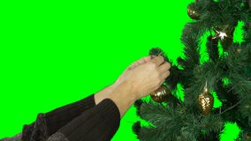 Slow motion close up. Alpha channel transparent background. Mans hand hange golden ball to green branch of christmas. Tree. Prepairing to celebrate Marry stock video