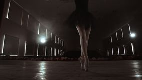SLOW MOTION: close-up of the ballerina`s legs in the pounts and smooth movement of the camera along the vertical axis. Portrait of a ballerina stock video footage