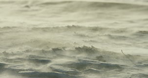 Slow motion close-up of blizzard on beach. During a winter storm, RED Dragon 4K 120fps stock footage